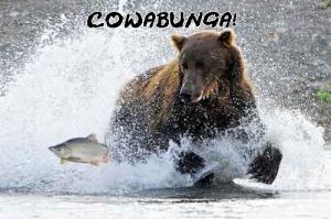 Bear-fishL