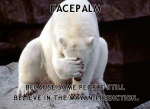 mayanbearfacepalm